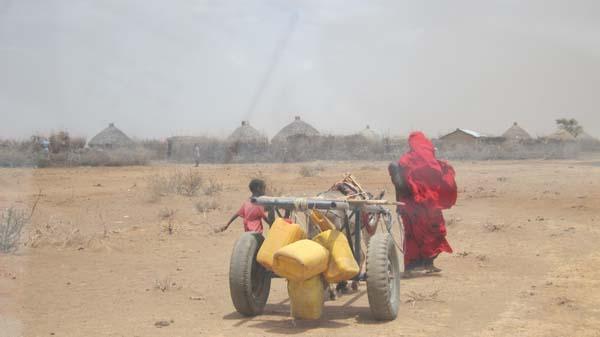 Algunas familias se valen de burros para transportar el agua que recogen a kilómetros de sus casas