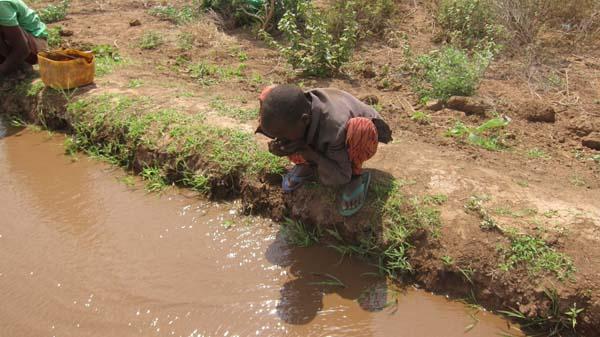 El agua de riego es la misma que se usa para beber