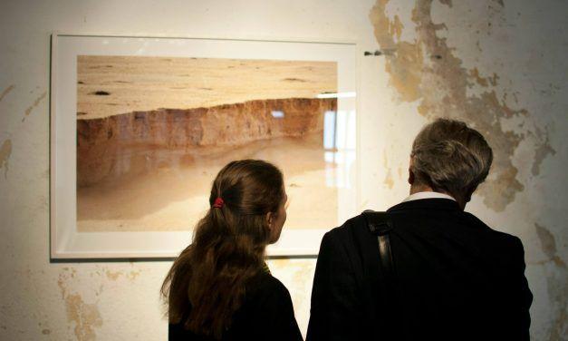 La Colmena I Convocatoria: Exposición inaugural