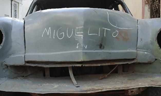 Allí, donde crece la palma: el futuro de la identidad cubana