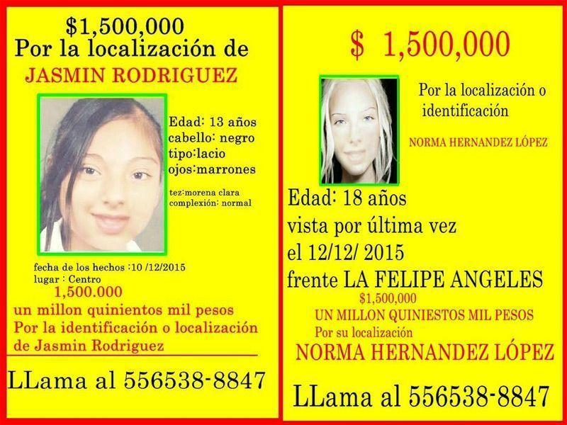 Los dos carteles ficticios que colgaron Omar y Julia en Ciudad Juárez.