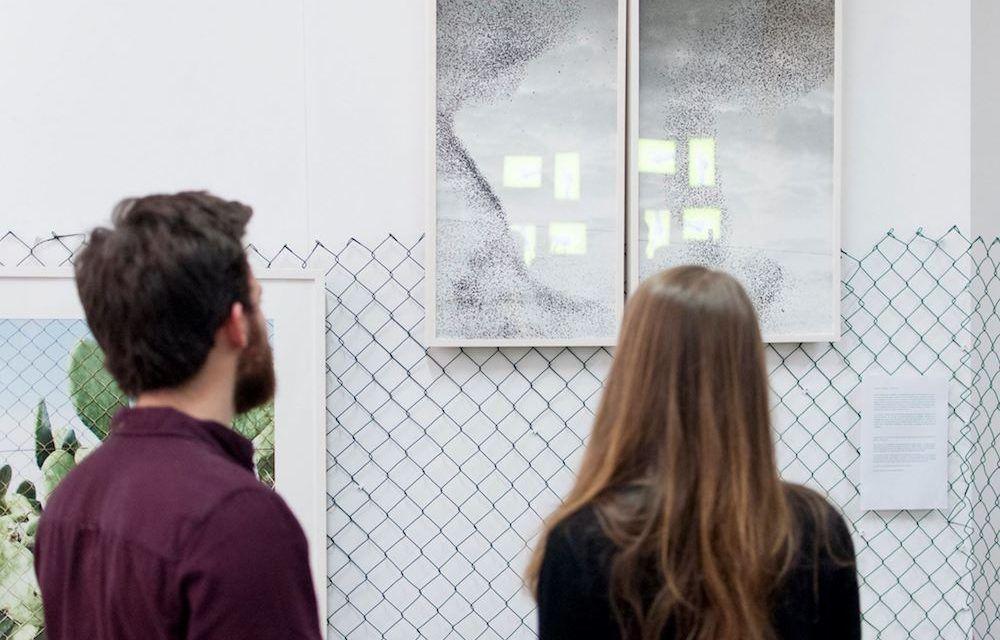 La Colmena I Convocatoria: Exposición de clausura